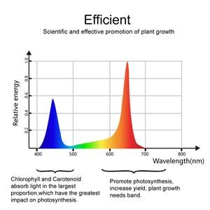 Image 4 - ספקטרום מלא 1800W 900W led לגדול אור כפול שבב 10W לצמחים מקורה מנורות הידרופוניקה תאורה לגדול אוהל