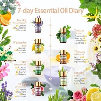 Pure Essential Oils 15pcs Gift Set Natural Plant Aroma Essential Oil Diffuser Eucalyptus Vanilla Mint Lavender Rose Tea Tree Oil 2
