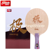 2020 New DHS Hurricane G Table Tennis Blade (2 Sides Different Material, OFF++) Arylate Carbon ALC Racket Ping Pong Bat Paddle