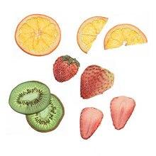 Obst scheibe probe epoxy AB leim handwerk für schmuck diy getrocknete blume handy fall foto rahmen schmuck dekoration