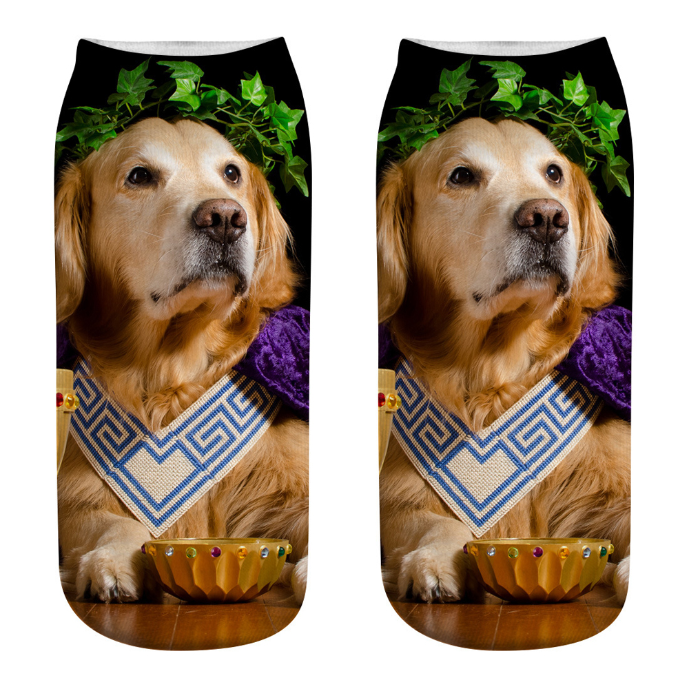 For Pet Fans Home Decors New Arrivals Cute Dog 3D Printing Socks with Dog Design  My Pet World Store