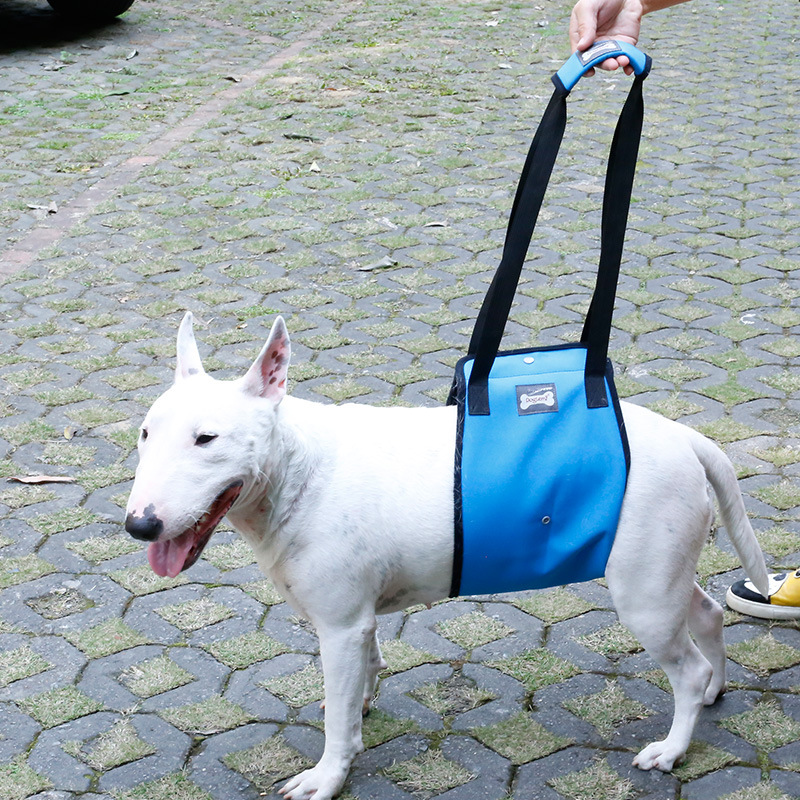 Dole M Dog-Leg Auxiliary Suspender Strap Older Dog Hind Legs Injured Protection Dog Walker With Car Upstairs