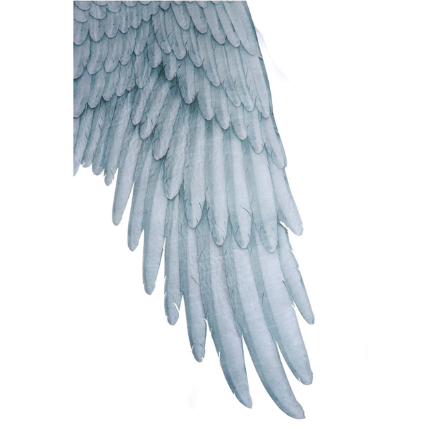 Disfraz de Halloween de alas grandes de ngel diablo Mardi Gras Fiesta Tem tica accesorios de