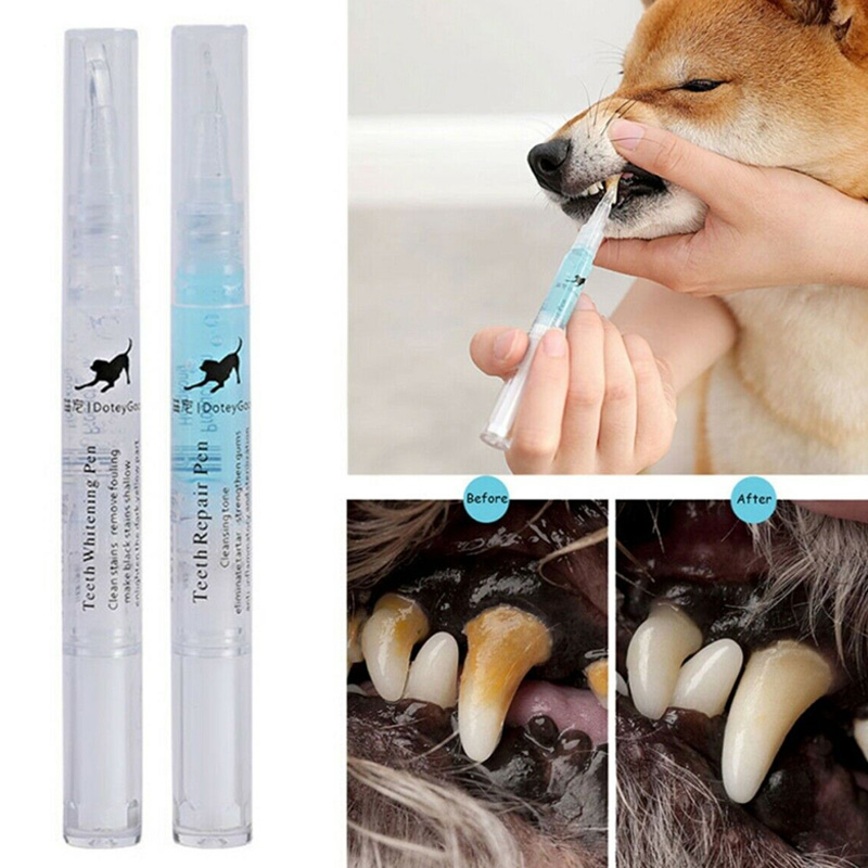 Pets Dogs Teeth Dental Calculus Stones Remover Toothbrush Cleaning Kit 2pcs 5ml/2ml Best Price image