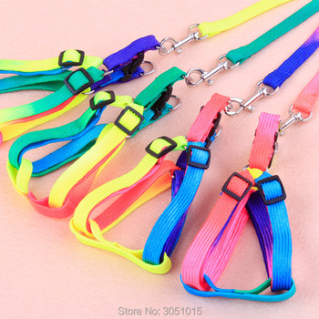 20pcs Durable Colorful Rainbow Pet Dog Collar Chest strap Harness Leash Soft Walking Harness Lead Colorful Nylon Traction Rope