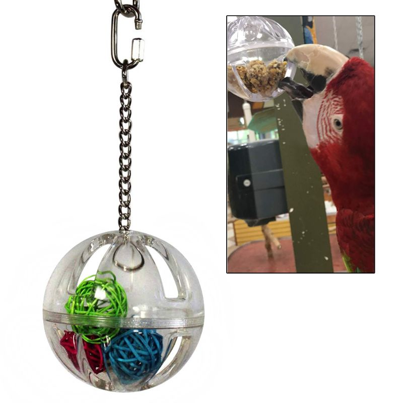 Parrot Chew Toy Hanging Foraging Ball With Balls Inside Bird Cage Acrylic Stand