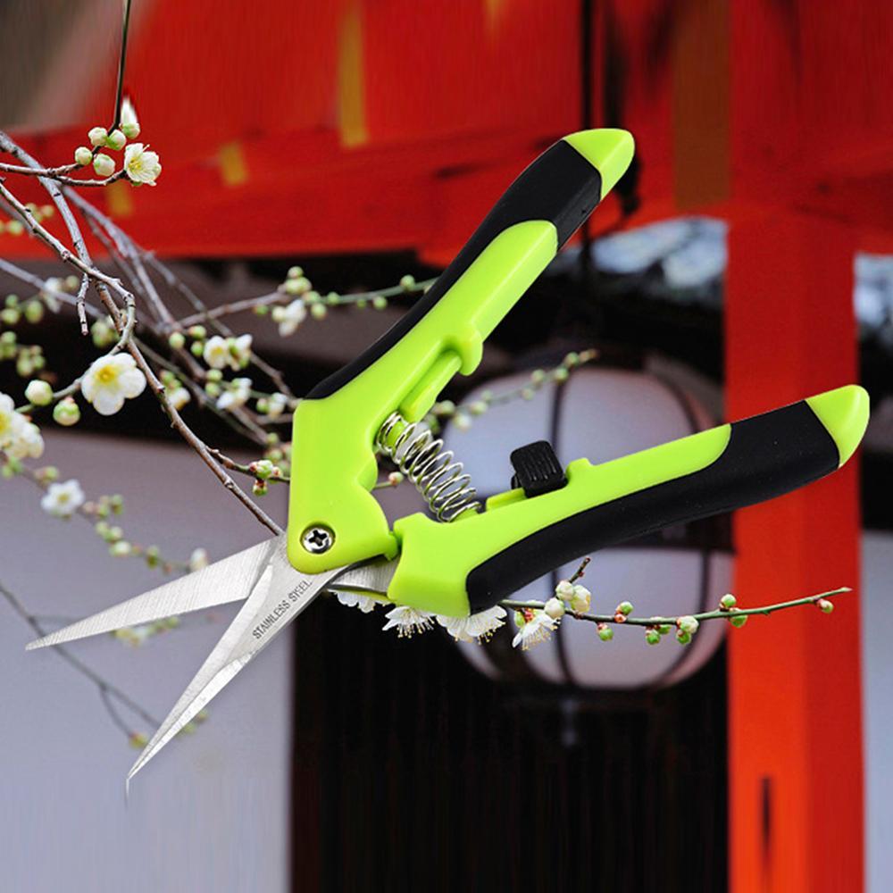 Sécateur de jardin ciseaux de cueillette de verger garniture en pot Branches de mauvaises herbes fleur de jardin ciseaux pointus outils de jardinage à main