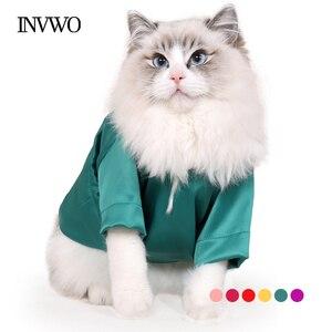 INVWO/летнее платье-футболка яркого цвета с рисунком кошки тонкая шерстяная одежда с антипригарным покрытием в британском стиле, шесть цветов...