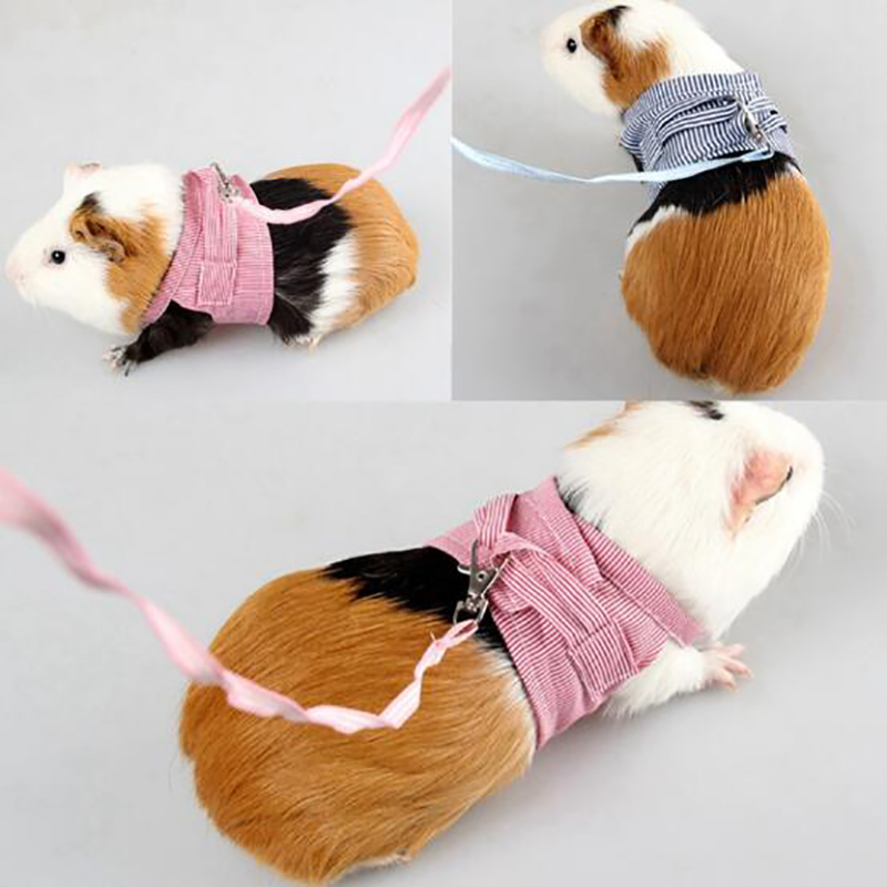 Small Pet Two-legged Chest Strap Outdoor Traction Rope Leash Clothes For Chinchilla Dutch Guinea Pig Breathable Cotton Corset