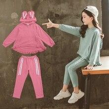 New Arrive Children Clothing Sets Costumes For Kids Sport Suits Hoodies+Pants Tracksuit Sets Cute Cartoon Baby Girls Clothes цена в Москве и Питере