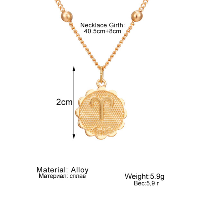 12 Constellations Coin Pendants Necklace Gold Zodiac Sign Aries Leo Necklace Women Jewelry Twelve Horoscope Clavicle Necklace 5