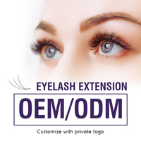 OEM/ODM 0.07 0.25mm Eyelash Extension Private Logo Customized Eyelashes Private Label Free Design Individual Lashes High Quality