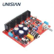 UNISIAN E3 carte amplificateur casque base sur Beyerdynamic A1 écouteurs amplificateurs alpes potentiomètre pour casque