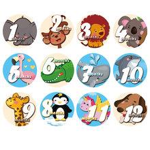 12 sztuk zestaw Baby Month naklejka Studio Home Newborn Milestone wspomnienia miesięczne pamiątki fotografia zdjęcie akcesoria fotograficzne karty tanie tanio Paper 12Pcs 10cm 0-3 M 4-6 M 7-9 M 10-12 M animal Y0113
