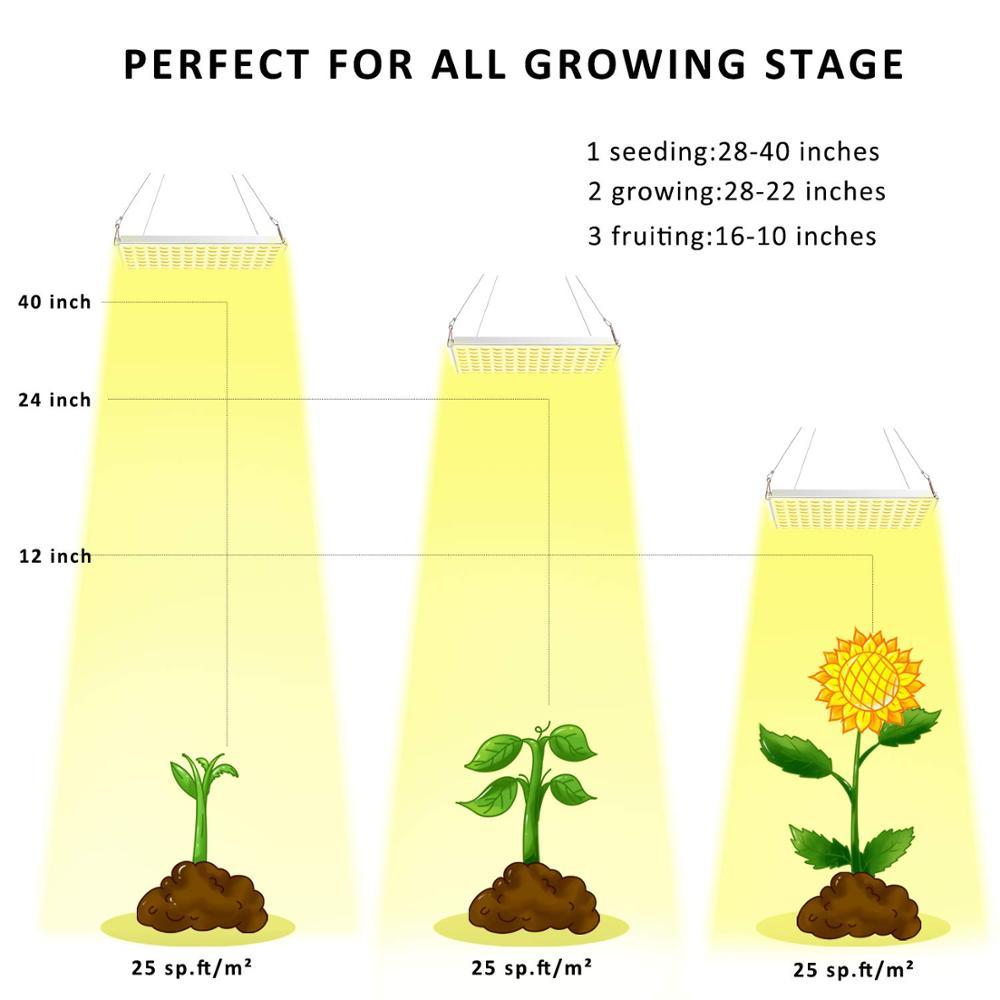 cheap lampadas de crescimento 01