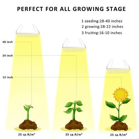 cheap lampadas de crescimento