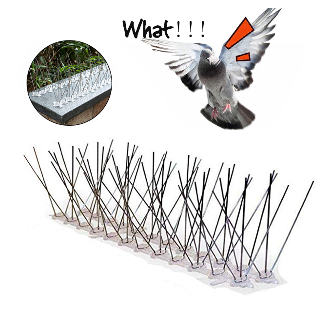 Hot 6M Plastic Bird And Pigeon Spikes Pest Repeller Anti Bird Pigeon Spike For Get Rid Of Pigeons And Scare Birds Pest Control
