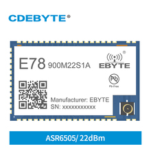 LoRa Receiver ASR6505 868MHz 915MHz Wireless RF Transceiver SOC Module E78-900M22S1A IPEX Stamp Hole LoRaWAN IoT Smart Home