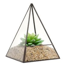 Glass Terrarium Storage Box Glass Jewelry Holder Pyramid Tabletop Succulent Plant Terrarium Box/Air Plant & Cacti Holder Case