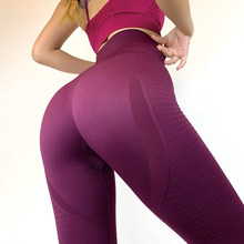Gym Shark Yoga Pants High Waist Seamless Leggings Sport Women Fitness Workout Sportswear Elastic Exercise Yoga Running Tights(China)