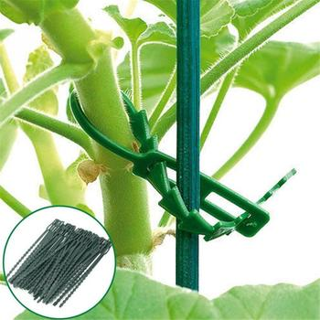 100pcs Adjustable Plastic Plant Cable Ties Gardening tools for Garden Tree Climbing Support Plant Vine Tomato Stem Clips