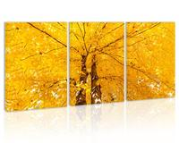 Autumn Golden Tree Leave Maple Wall Art Decor Canvas Painting Kitchen Prints Pictures for Home Living Dining Room