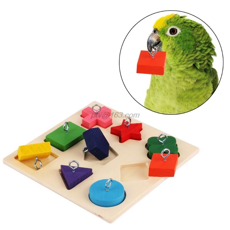 font b Pet b font Educational Toys Parrot Interactive Training Colorful Wooden Block Birds Puzzle
