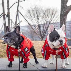 Image 2 - Luxury Winter Small Dog Clothes For Small Large Dogs French Bulldog Clothes Clothing For Dogs Coat The Dog Face Jacket Chihuahua