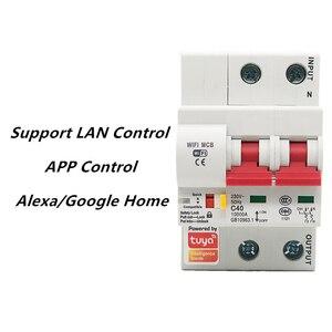 Image 3 - Tuya חכם WiFi מפסק 2P מתג אוטומטי עומס יתר הגנה קצרה Alexa Google בית תואם חכם חיים