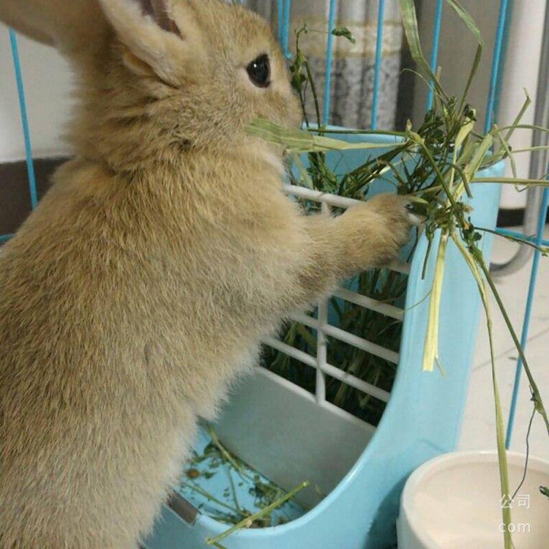 2in1 Pet Feeder Grass Rack Rabbit Food Pot Fixed Food Bowl Shelf Hamster Chinchillas Feeder Box Small Pet Supplies