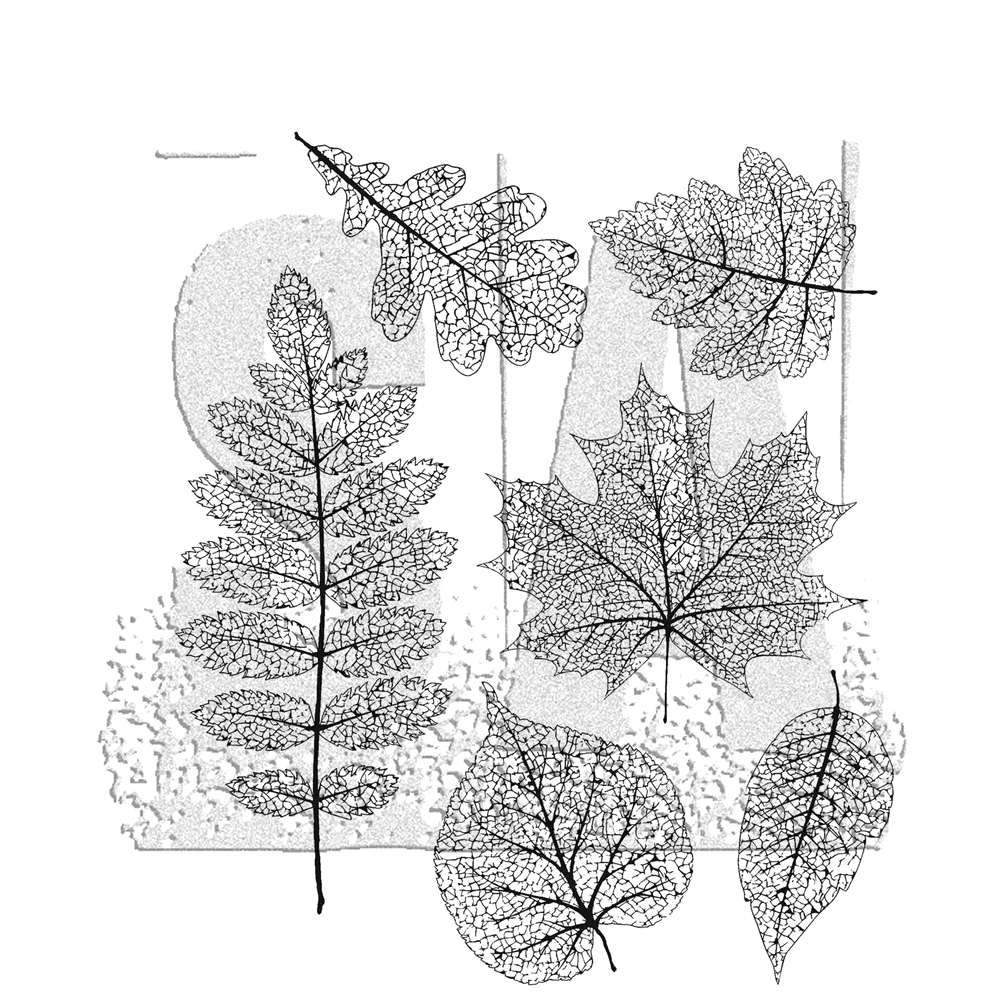 Leaves  Transparent Clear Stamp For DIY Scrapbooking Seal Card Making  C605