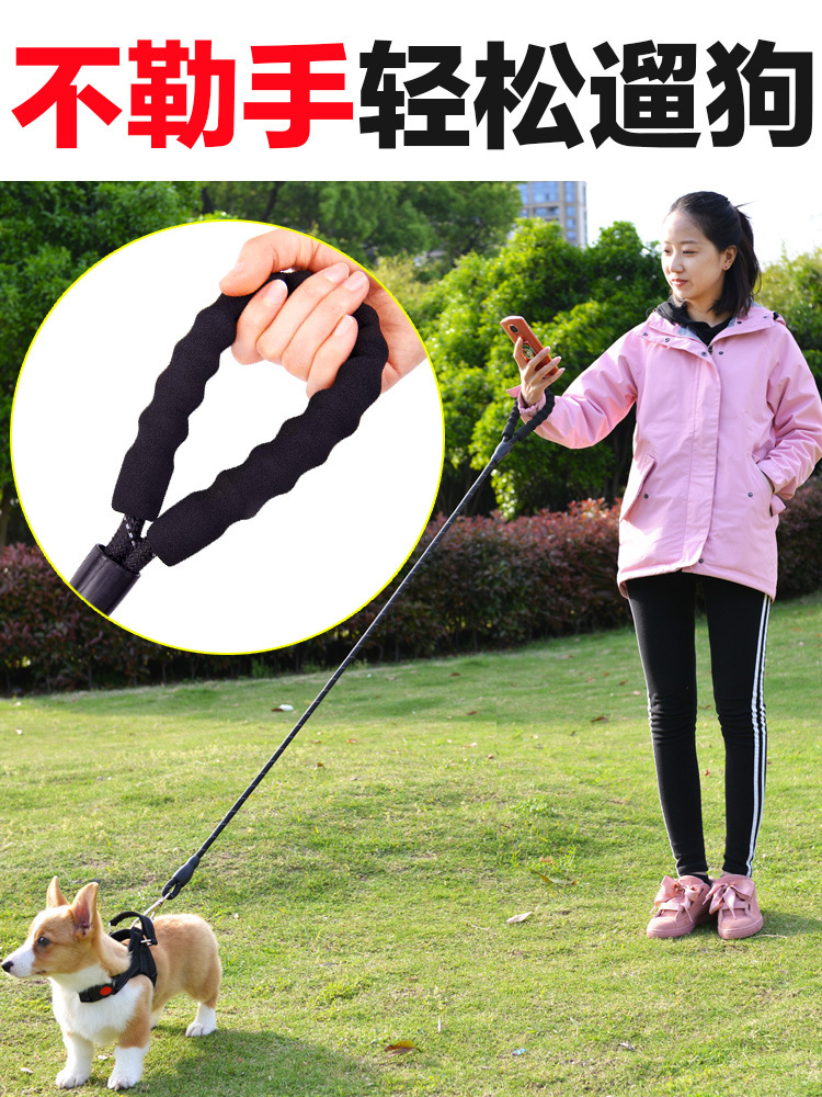 Dog's Straps Lanyard Small And Medium-sized Dogs Dog Chain Corgi Back Type Dog Lanyard Sub-Anti-Break Free Thoracic Traction Ted