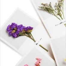 1шт% 2Fpack милый простой крафт бумага маленький подарок поздравление сушеные цветы индивидуальные винтаж открытка