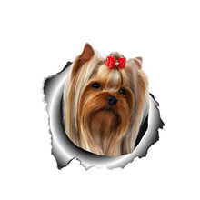 Interesting car sticker accessories 3d dog yorkshire terrier