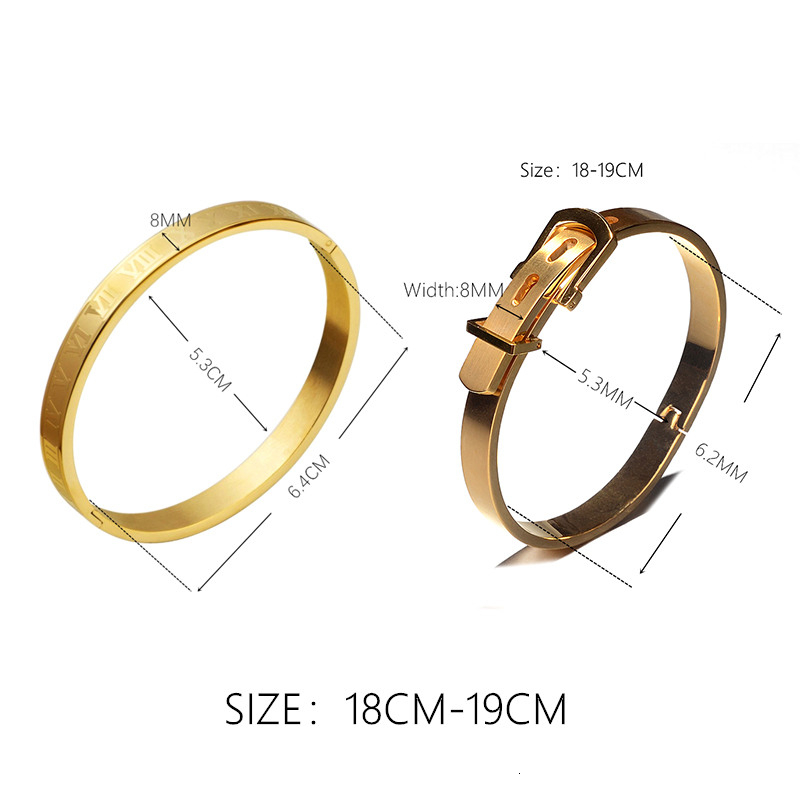 Classic Stainless Steel Bangle Luxury Cuff Bracelets Men Fashion Titanium Steel Type C Twisted Roman Numeral Bangle For Men