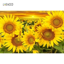 Laeacco Sunflowers Field Sunset Dusk Scenic Photography Backgrounds Customized Vinyl Photographic Backdrops For Photo Studio