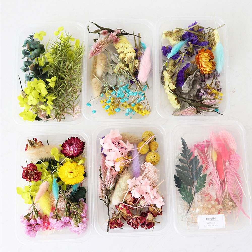 1-Box-Real-Dried-Flower-Dry-Plants-For--Candle-Epoxy-Resin-Pendant-Necklace-Making-Craft