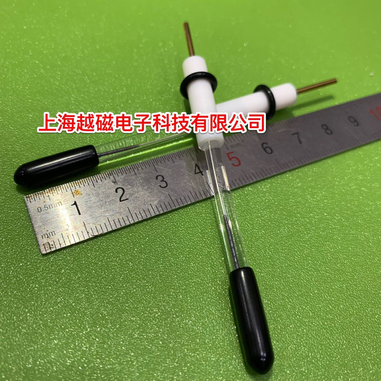 Removable R0303 Silver. Silver Chloride Reference Electrode