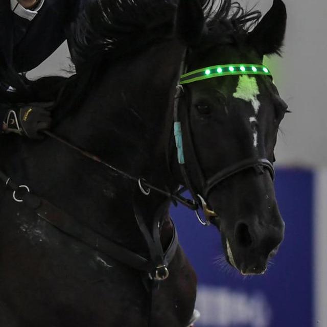 LED Horse Head Straps 3 Luminous Modes Colorful Lighting Equestrian Equipment 6