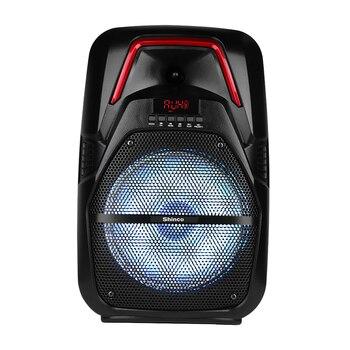 Shinco, sistema de altavoces para Karaoke al aire libre, Subwoofer Inalámbrico con micrófono Lightning LED inalámbrico, compatible con tarjeta USB/TF/AUX/FM