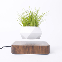 Levitating Air Bonsai Pot Rotation Flower Pot Planters Magnetic Suspension Floating Pot Potted Plant Home Desk Decor