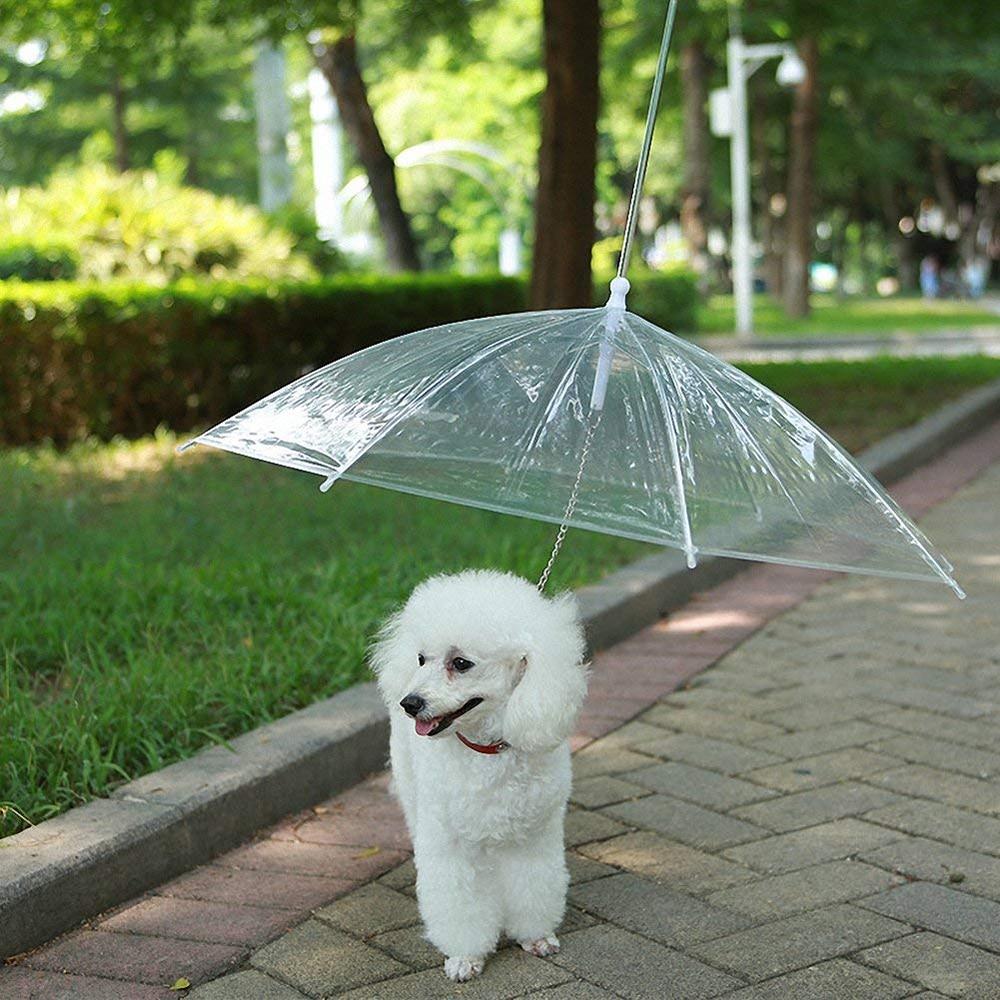 Pet-Dog-Umbrella-Hyena-Reverse-Umbrella-Transparent-Keep-Dry-Umbrella-Anti-Rain-Poncho-Waterproof-pet-products (2)