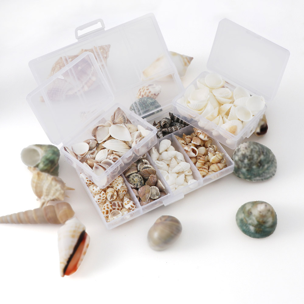 50g/103g Aquarium Beach Landscape Natural Seashells Decorations DIY Mixed Bulk Sea Shell Jewelry Crafts Wall Decor Nail Shell