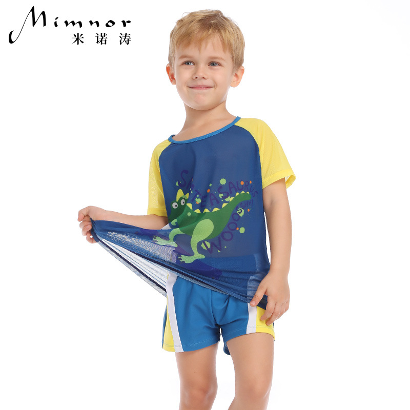 Yi Run Cartoon CHILDREN'S Garment Split Swimsuit Men's UV-Protection Quick Drying Clothes Boy Size Child Dinosaur Swimwear