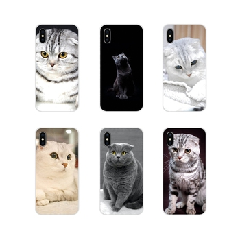 Scottish fold cat Felis catus Scotland Cell Phone Cases Cover For Samsung Galaxy A3 A5 A7 A9 A8 Star A6 Plus 2018 2015 2016 2017 image