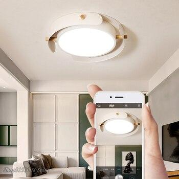 โมเดิร์นโคมไฟเพดาน LED โคมไฟเพดานสำหรับศึกษาห้องนั่งเล่นห้องนอน Nordic Cowhide เพดานแสง Deco ติดตั้ง