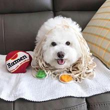 Игрушечный мяч для собак нетоксичные игрушки щенков Игрушки