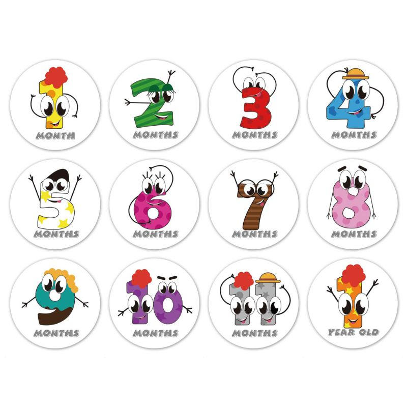 First Year Monthly Milestone Photo Sharing Baby Belly Stickers, 1-12 Months NEW