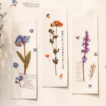 PET Flower Cotton Rose Lavender Decorative Washi Stickers Bag Scrapbooking Stick Label Diary Stationery Album Sticker night star magic circle gilding decorative washi stickers scrapbooking stick label diary stationery album stickers