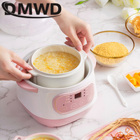DMWD Electric Slow Cooker Food Steamer Ceramic Pot Multifunction BirdNest Soup Stew Pregnant Tonic Baby Supplement Heater Warmer
